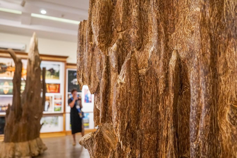 Bảo tàng trầm hương hơn 200 tỷ đồng ở Nha Trang 3