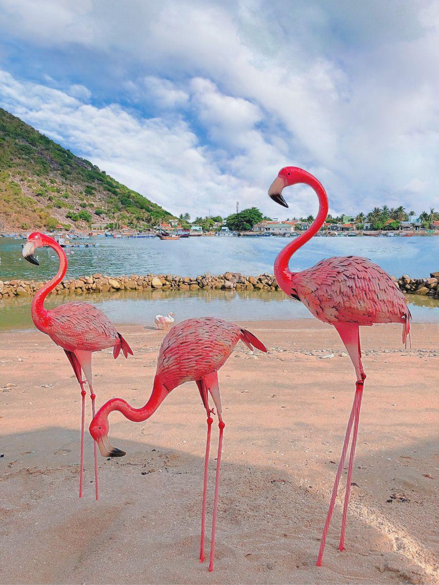 Tour Hòn Chồng - Đảo Tình Yêu trong ngày 5