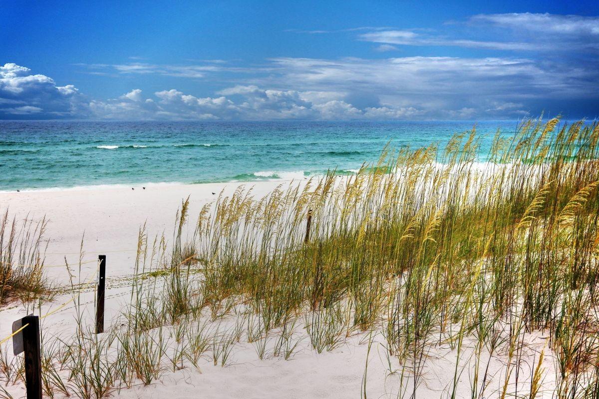 Nha Trang, Phú Quốc vào top 50 nơi có bãi biển đẹp nhất thế giới - 3